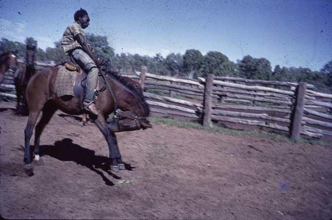 Reggie Riding Horseback