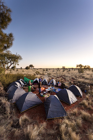 A circle of tents in the bush.