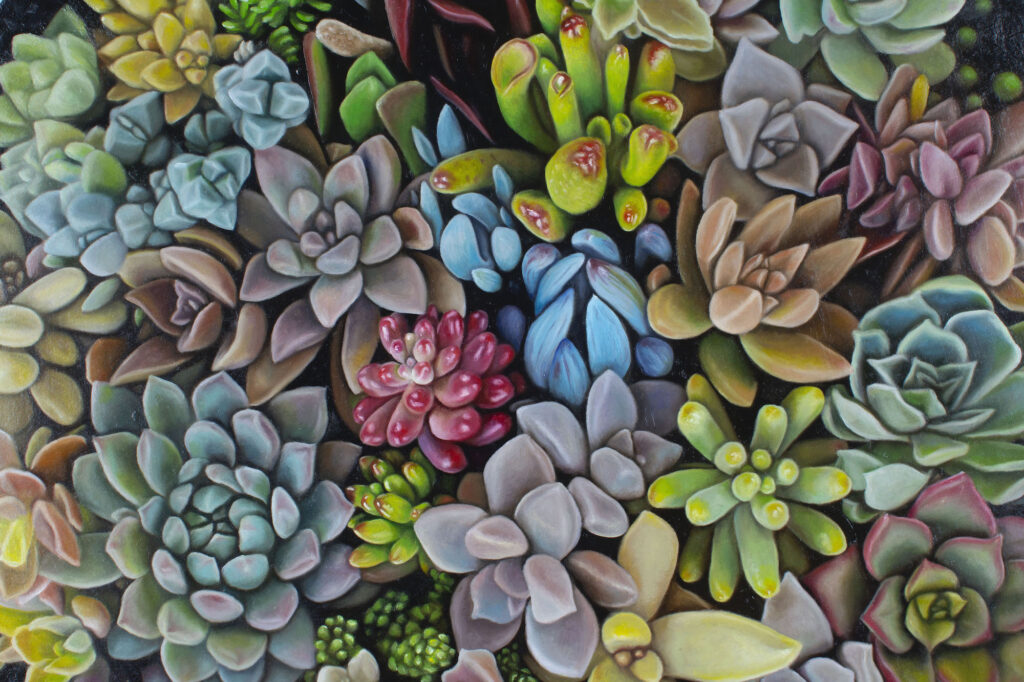 A painting of succulents, in many different, rich yet somehow muted colours.