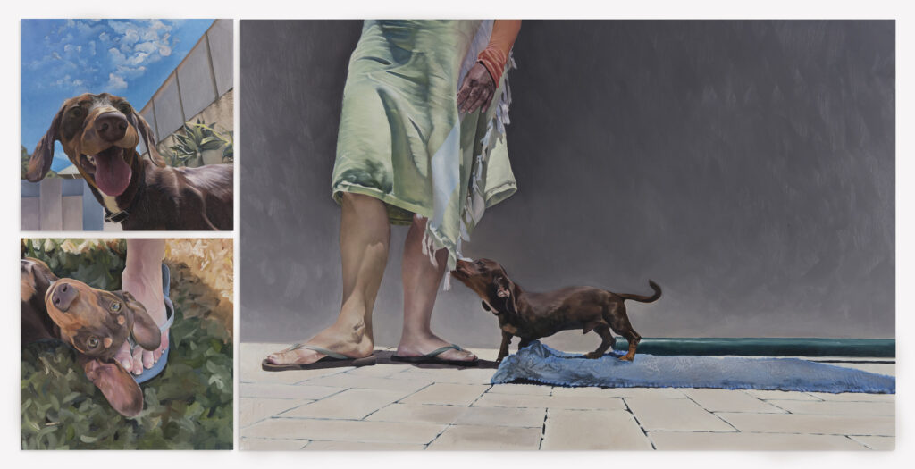 Michelle Edward's 'Louis in Suburbia' includes three images of a dashchund, rendered in bright colours that make the work seem almost surreal.